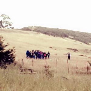 wildlife talk in the field